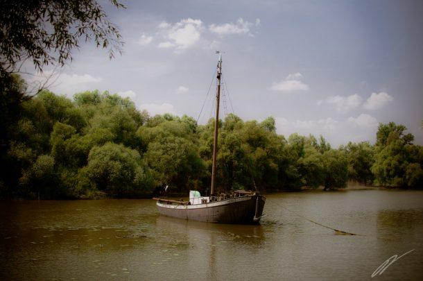 Auch im Rhein: Ein Boot