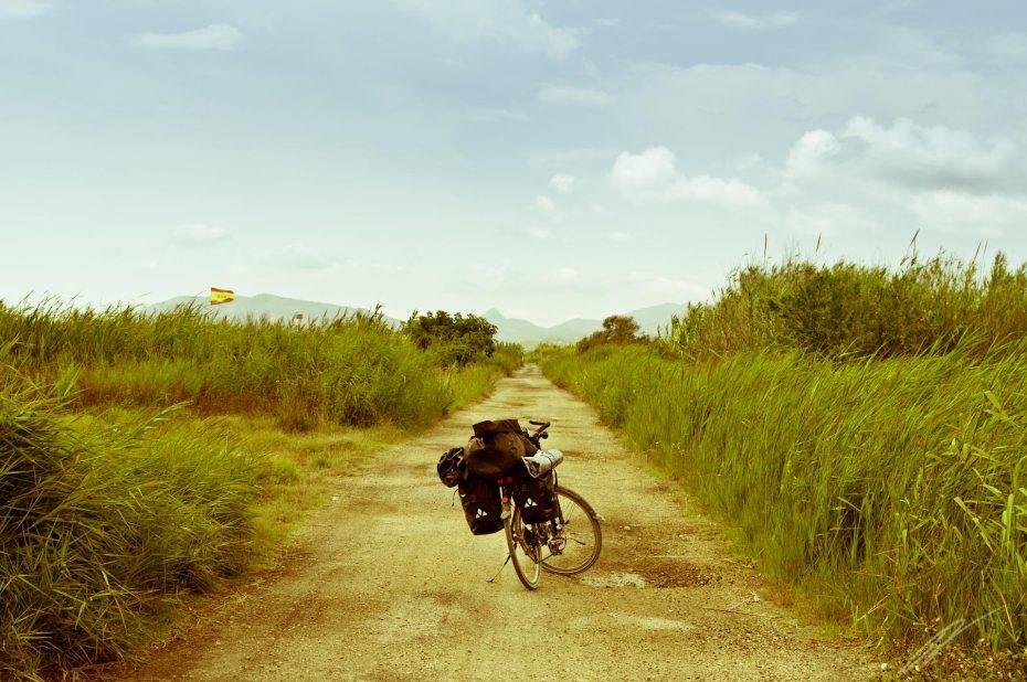 Der Weg zum Rototom