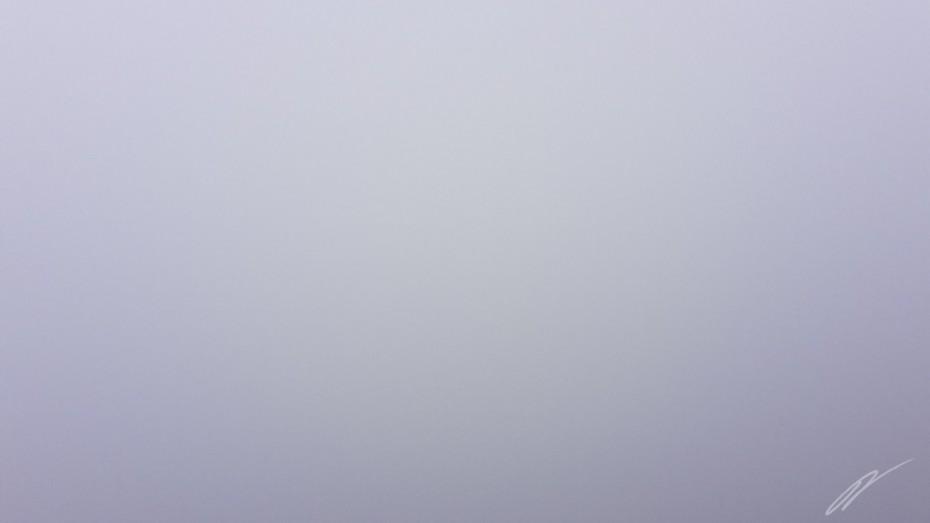 Aufgrund von Nebel nicht erkennbar - Der Weg