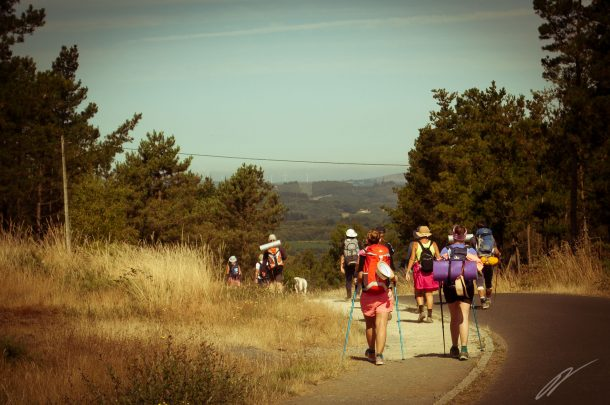 Pilgerströme auf dem Camino Francés