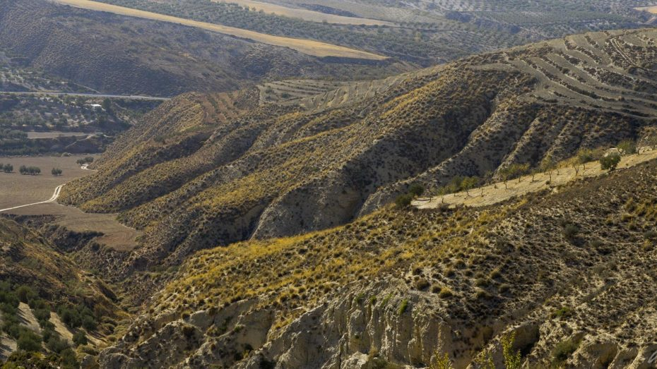 andalusische Landschaft
