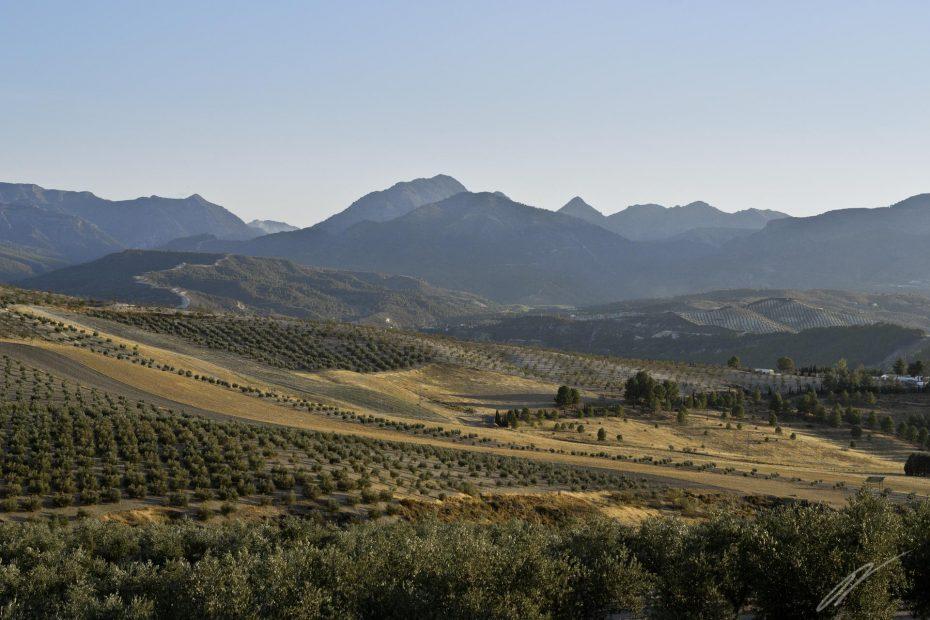 andalusische Landschaft bei der Embalse de los Bermejales