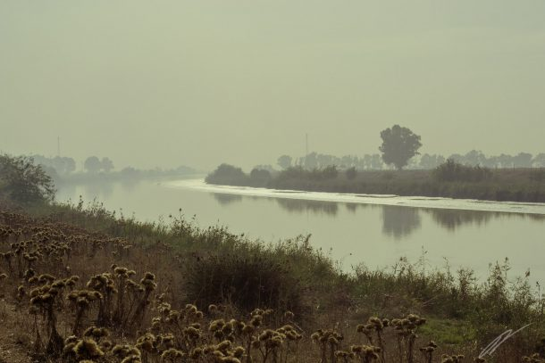 Rauchschwaden über dem Guadalquivir